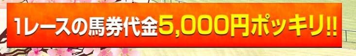 競馬予想サイト 令和ケイバ 1レース5000円